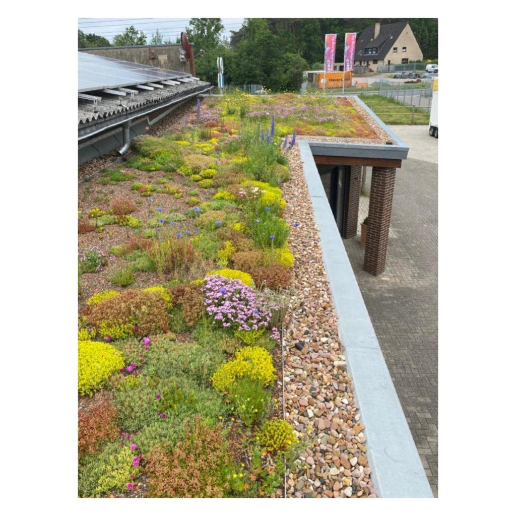 Für das Unternehmen ABC Neonwerbung in Hollage sind wir in den ökologischen Sektor des Bauens gegangen.
